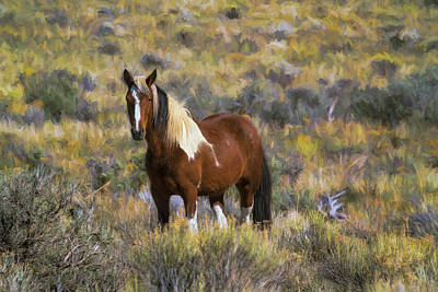 Photograph - Beautiful Mare From South Steens Painterly by Belinda Greb