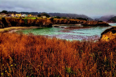 Photograph - Beautiful Mendocino Landscape by Garry Gay