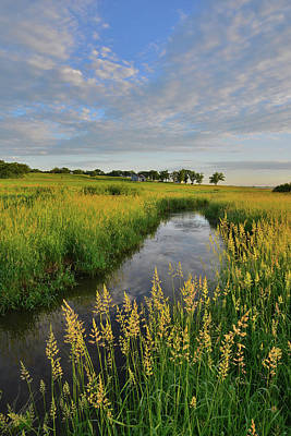 Photograph - Beautiful Morning In Glacial Park In Mchenry County by Ray Mathis