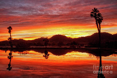 Photograph - Beautiful Morning Reflections by Robert Bales