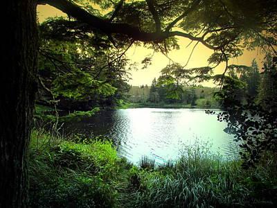 Photograph - Beautiful Mountain Lake by Joyce Dickens