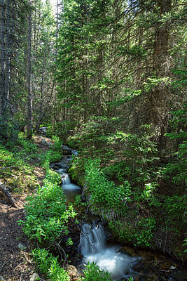 Photograph - Beautiful Mountain Stream Hike by James BO Insogna