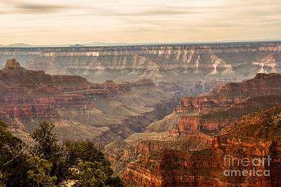 Photograph - Beautiful North Rim by Robert Bales