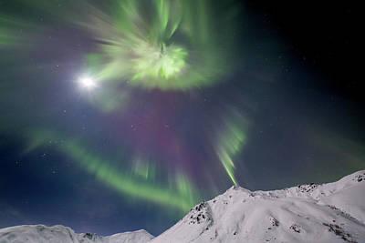 Photograph - Beautiful Northern Lights Corona by Matt Skinner