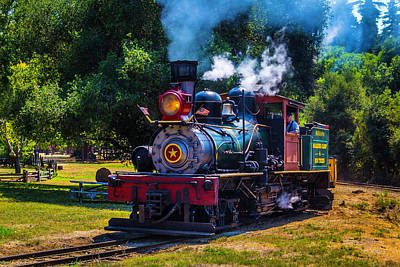 Headlight Photograph - Beautiful Old Steam Train by Garry Gay