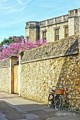 Photograph - Beautiful Oxford by Terri Waters