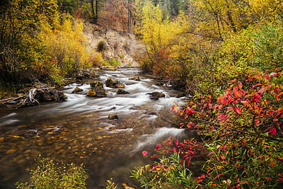 Photograph - Beautiful Palisades Creek Autumn Glory In Idaho by Vishwanath Bhat