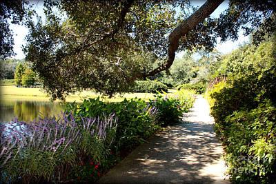 Photograph - Beautiful Pond Path by Carol Groenen