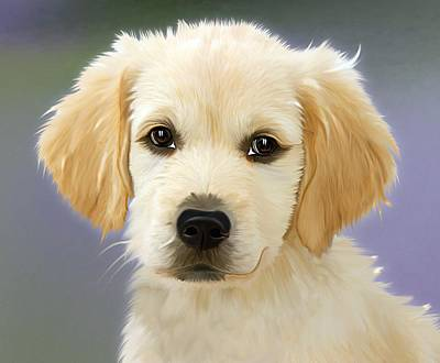 Adorable Digital Art - Beautiful Puppy by Billy Soden