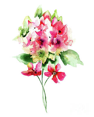 Painting - Beautiful Red Hydrangea Flowers, Watercolor Illustration by Regina Jershova
