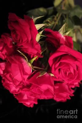 Photograph - Beautiful Red Roses 5 by Tara  Shalton