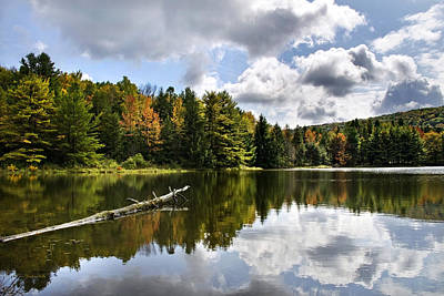 Photograph - Beautiful Reflections Landscape by Christina Rollo
