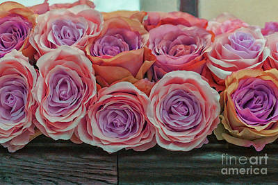 Photograph - Beautiful Roses by Patricia Hofmeester