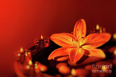 Photograph - Beautiful Spa Composition by Anna Om
