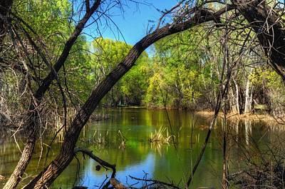Watson Lake Photograph - Beautiful Spring Day by Thomas  Todd