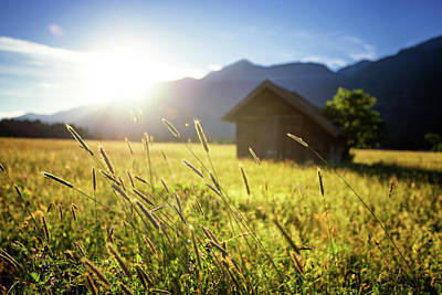 Photograph - Beautiful Spring Meadow. Sunny Clear Sky With Hut In Mountains. Colorfull Field Full Of Flowers. Grainau, Germany by Marek Kijevsky