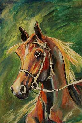 Painting - Beautiful Stallion by Khalid Saeed