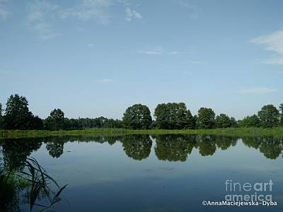 Photograph - Beautiful Stillness by Anna Folkartanna Maciejewska-Dyba
