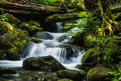 Photograph - Beautiful Stream In Columbia River Gorge Oregon by Vishwanath Bhat