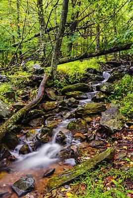 Beautiful Stream In Shenandoah National Park In Virginia Art Print by Vishwanath Bhat