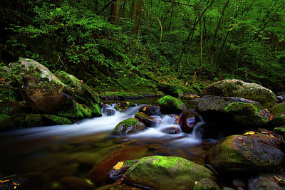 Beautiful Stream In Tremont Smoky Mountains Tennessee Art Print