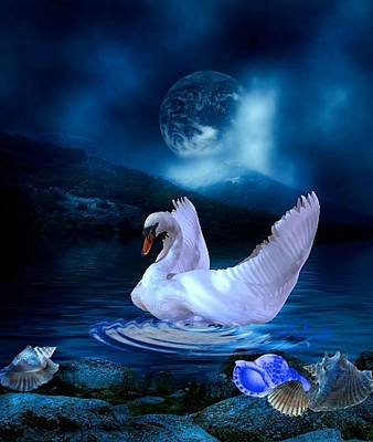 Beautiful Swan Art Print by G Berry