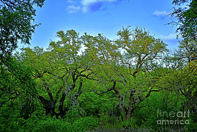 Photograph - Beautiful Texas View 2 by Ray Shrewsberry
