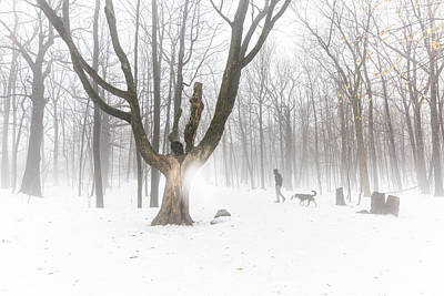 Outerspace Patenets Rights Managed Images - Beautiful tree in forest fog with man walking dog in background Royalty-Free Image by Mila Araujo