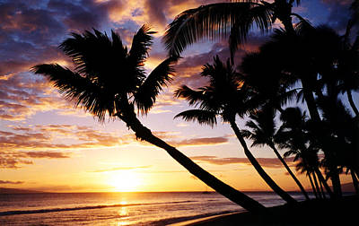 Beautiful Tropical Kaanapali Sunset On West Coast Of Maui Hawaii Art Print by Pierre Leclerc Photography