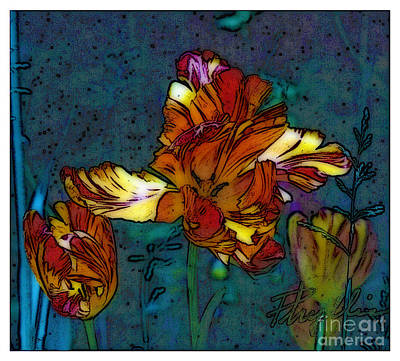 Photograph - Beautiful Tulip  by Phyllis Kaltenbach
