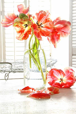 Beautiful Tulips In Old Milk Bottle  Art Print by Sandra Cunningham