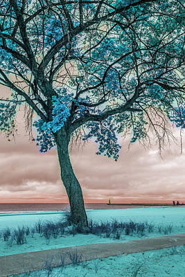 Photograph - Beautiful Turquoise At The Lake by Debra and Dave Vanderlaan