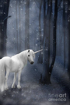 Silver Moonlight Photograph - Beautiful Unicorn In Snowy Forest by Ethiriel  Photography