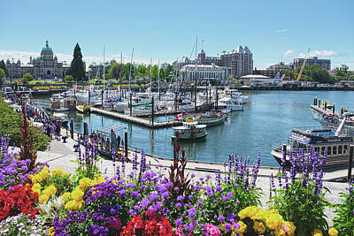 Photograph - Beautiful Victoria Harbor by Lucinda Walter