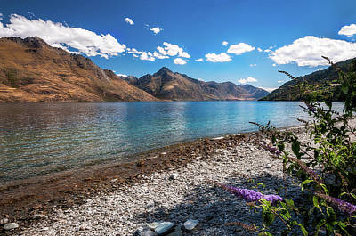 Photograph - Beautiful View Of Lake Wakatipu by Daniela Constantinescu