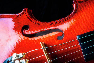 Fiddle Wall Art - Photograph - Beautiful Violin Close Up by Garry Gay