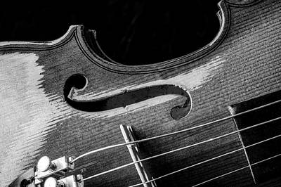 Fiddle Wall Art - Photograph - Beautiful Violin Close Up In Black And White by Garry Gay