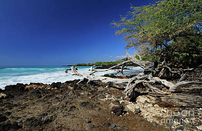 Photograph - Beautiful Waialea Beach II by Mary Haber