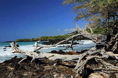 Photograph - Beautiful Waialea Beach by Mary Haber