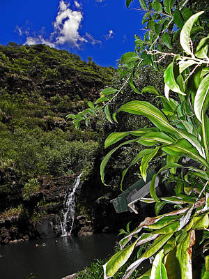 Photograph - Beautiful Waimea Falls II by Elizabeth Hoskinson
