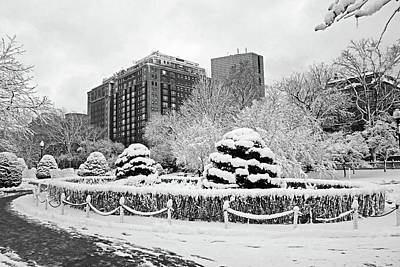 Photograph - Beautiful Winter Wonderland In The Boston Public Garden Boston Ma Wonderland Black And White by Toby McGuire