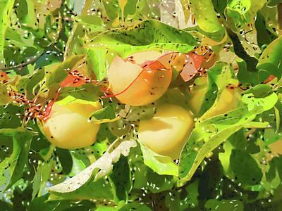 Yield Painting - Beautiful Yellow Apple by Lanjee Chee