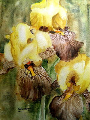 Painting - Beautiful Yellow Iris by Carol Grimes