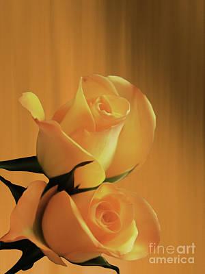 Beautiful Yellow Pair Of Roses  Original