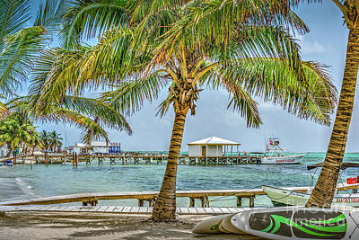 Photograph - Beautifull Day In Paradise by David Zanzinger