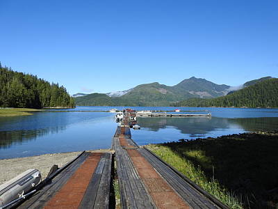 Photograph - Beautifully Blue by Nootka Sound