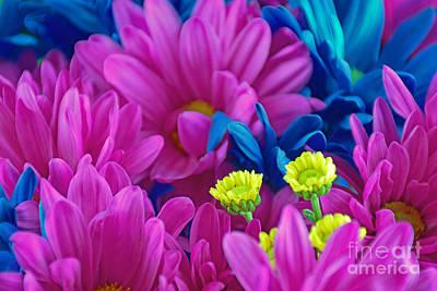 Beauty Among Beauty Art Print