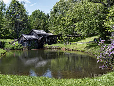 Photograph - Beauty And Peace by Brenda Kean