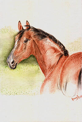 Brown Horse From The Wild Art Print by Remy Francis