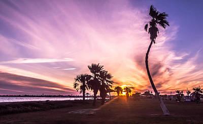 Photograph - Beauty At Sundown by Leticia Latocki